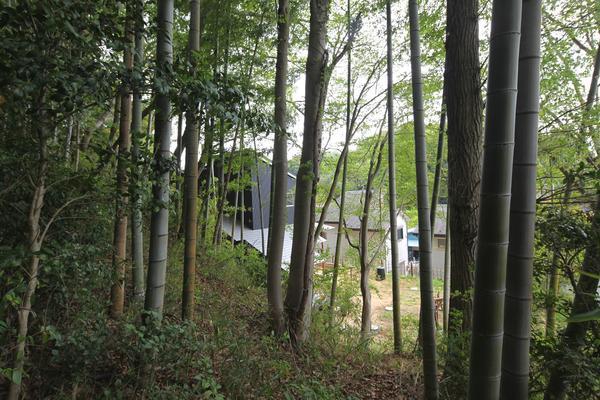 日本の美を伝えたい_鎌倉設計工房の仕事 482