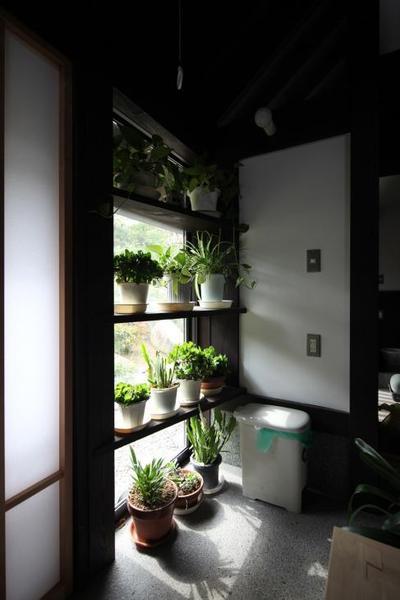 日本の美をつたえたい―鎌倉設計工房の仕事 118