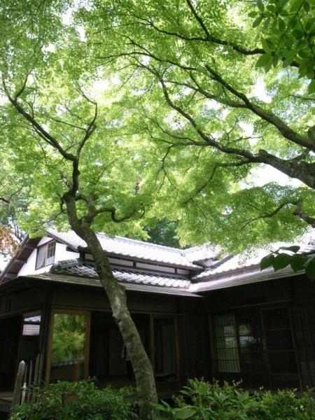 日本の美を伝えたい―鎌倉設計工房の仕事 7